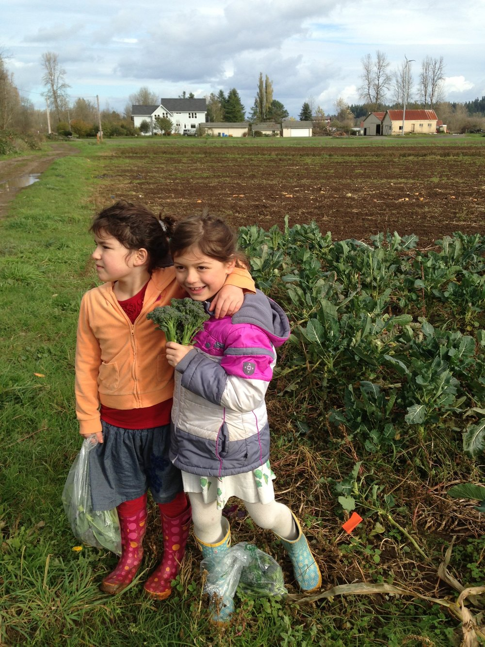 Helsing Junction Farm Field Kids