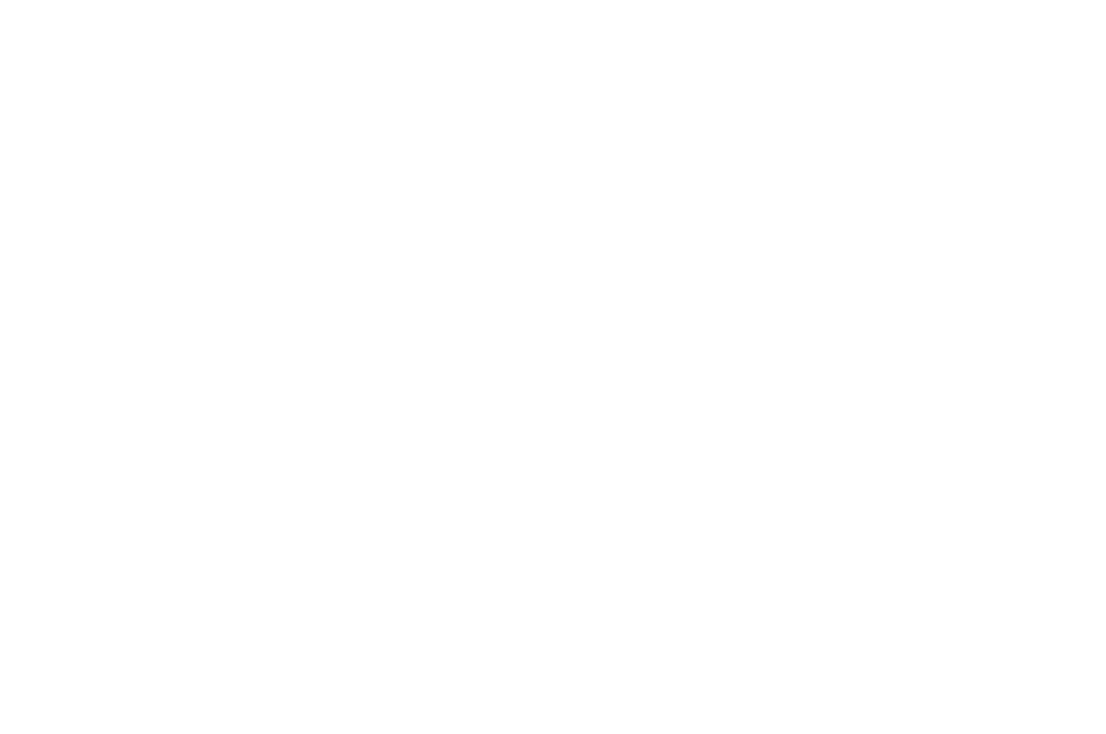 2018 Passionate Filmmaker Award - Franklin County International Film Festival - Steven Biver.png