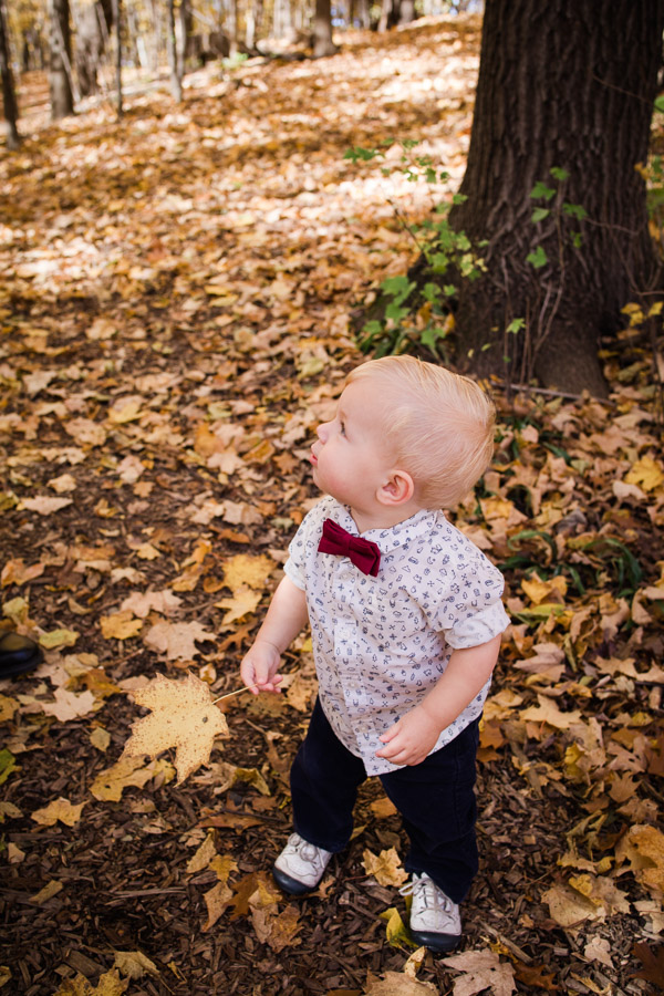 little boy playing in the leaves in the fall