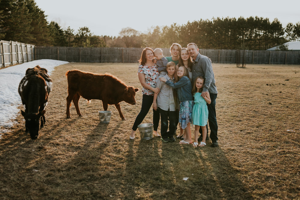 family in field at sunset with cows - Minneapolis Family Photographer