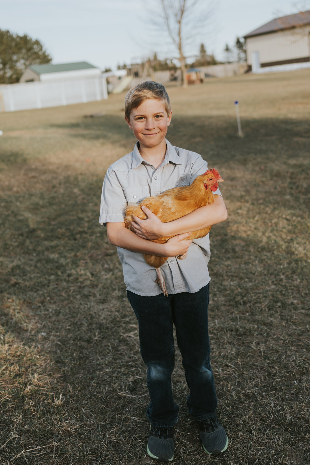 boy holding a chicken  - Twin Cities Family Photographer