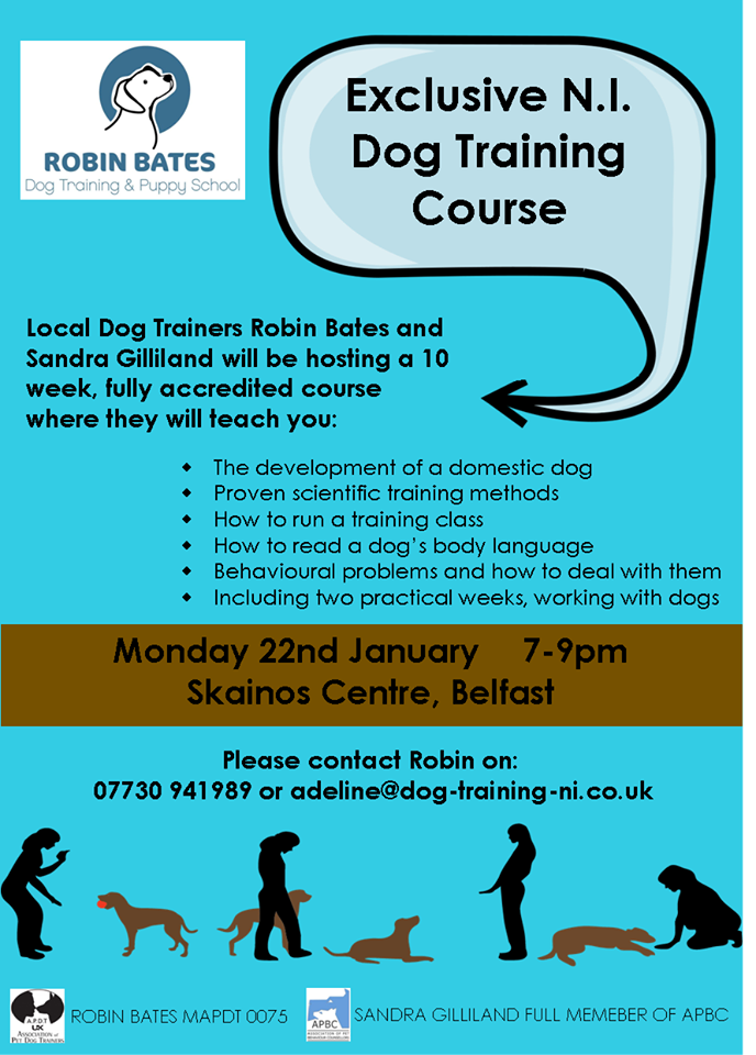10 week dog behaviour course Jan 2018