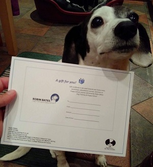 gift certificate mia.jpg