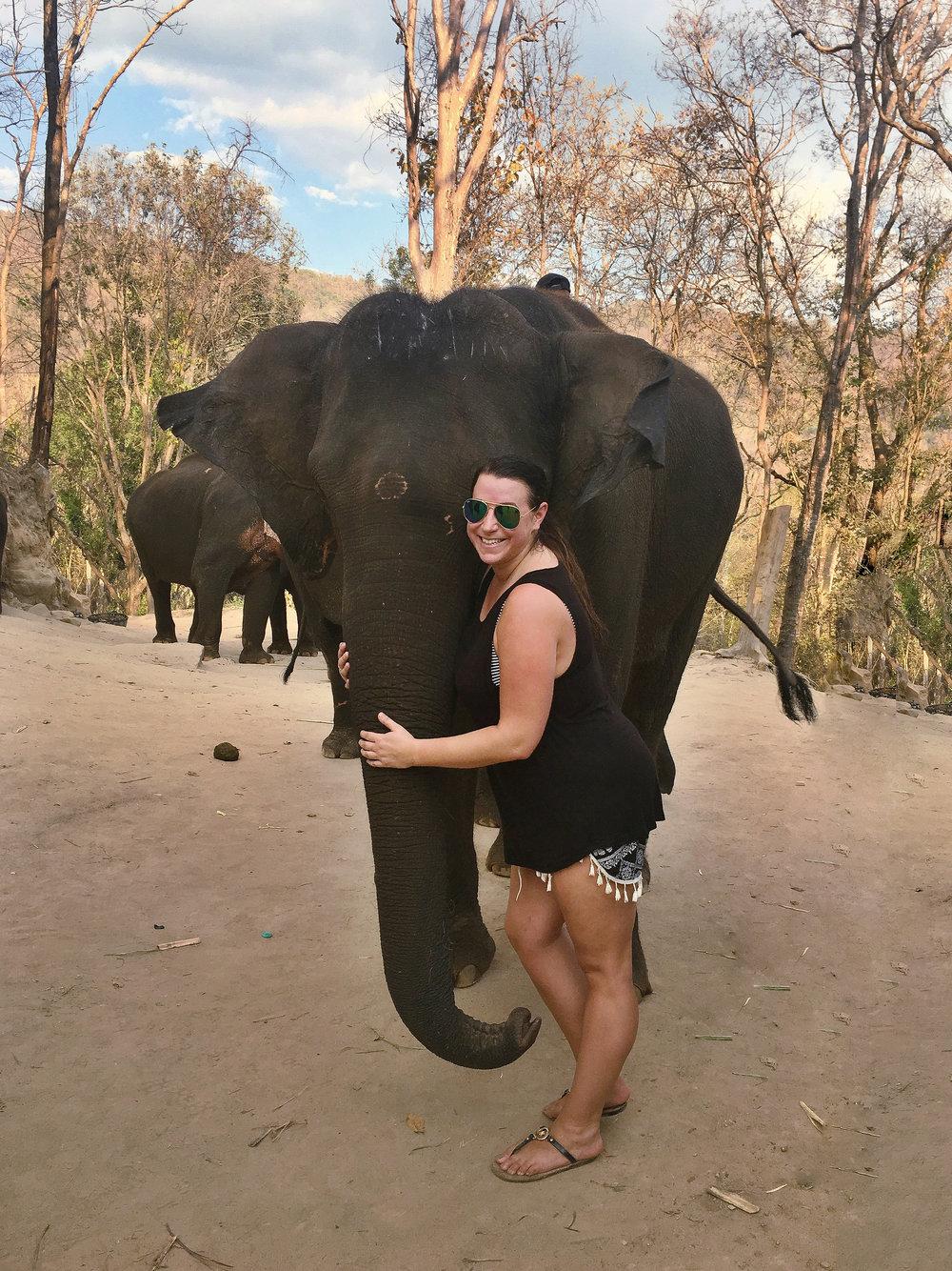 elephant_blog-42.jpg