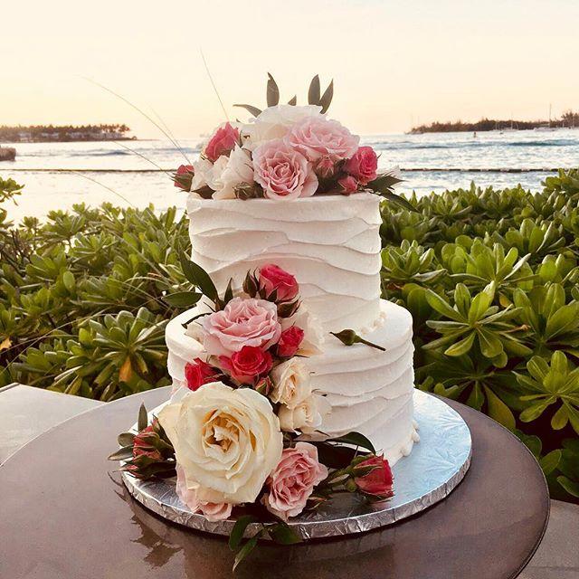 Love is sweet, have a treat! ⠀ •⠀ •⠀ •⠀ •⠀ #keywestwedding #destinationwedding⠀ #luxurywedding #weddingday  #weddingplanner #weddingcake⠀ #weddingplanning #weddingcoordinator ⠀ #luxuryweddingplanner #destinationweddingplanner #weddingplannerlife⠀ #weddingvibes #eventdesign #weddingstylist #weddinginspiration #weddinginspo #weddingideas #soireekeywest #lifeofaweddingplanner #lifeofaneventplanner #iphoneography #iphonephotography #instawedding⠀ #igerswedding