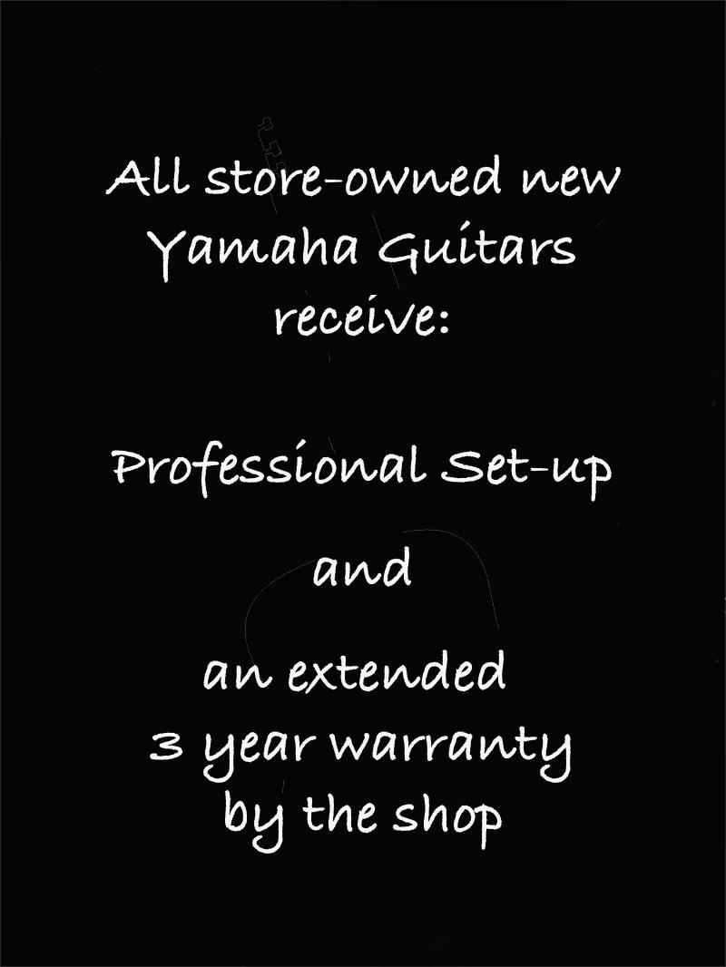 Yamaha extras blank2.jpg