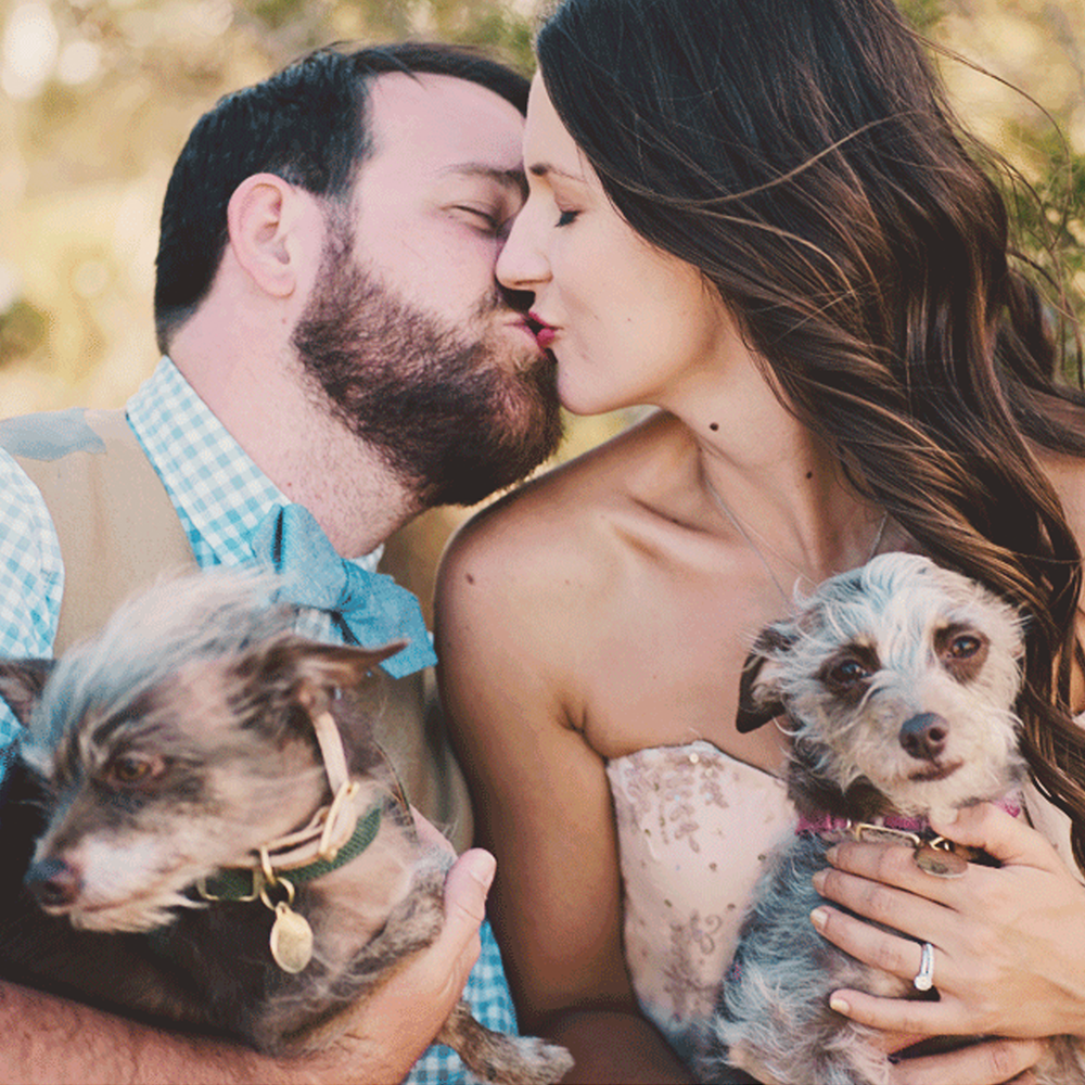 Modern Vintage Inland Empire Dogs at Wedding Photography.png
