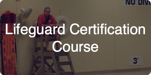 lifeguard cert course