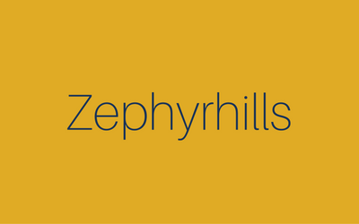 Neighborhood - Small - Zephyrhills.png