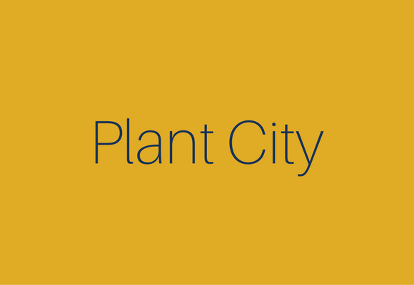 Neighborhoods - Medium - Plant City.png