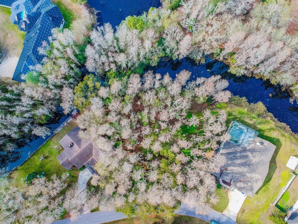 3905 Peninsular Dr Land O Lakes Florida - Aerial View
