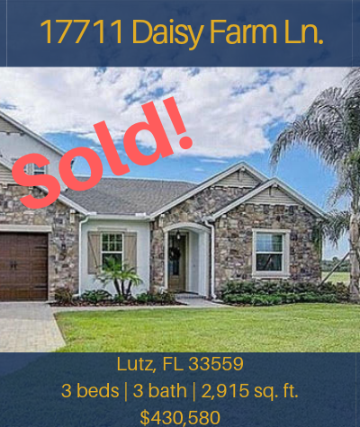 Flyer - 17711 Daisy Farm (Sold).png