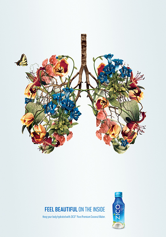 lungs_548.jpg