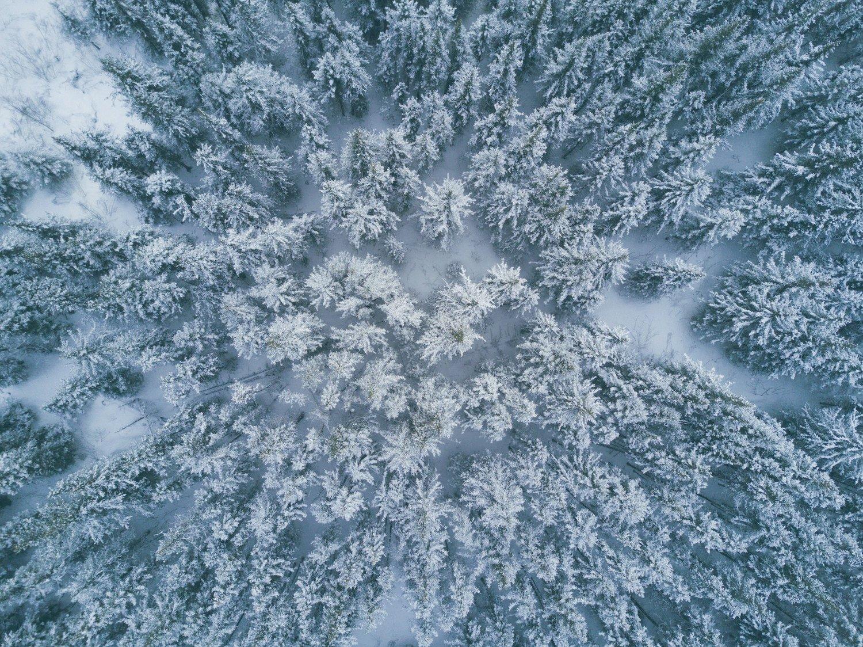 Alaskafeb15 0070 jpg