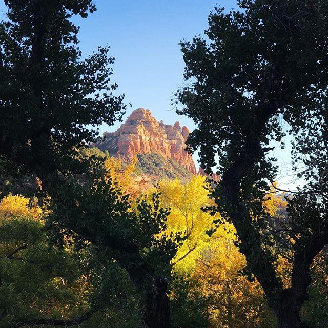 Oak Creek Canyon, Sedona AZ. #hiddenwondersphototours #phototours #arizonaphotographer #sedona #kimtinuviel #kimtinuvielartist