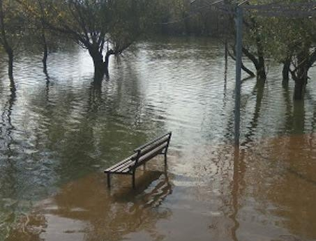 Wooden Bench Surrounded by Water