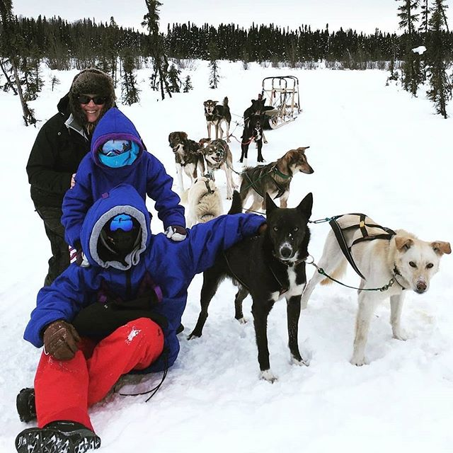 #Repost @lobielolo ・・・ I got to fall off the back of a dog sled in Alaska today!  #iditarod #sheshredsco #ilovedogs #theyresofluffy . . . . . #visitalaska #travelalaska #sharingalaska #thealaskalife #explorealaska #naturealaska #ilovealaska #iloveanchorage #alyeska #thelastfrontier #alaska#wasilla #mushingschool #mushing #dogsledding #sleddog #visitanchorage #thisisalaska #anchorage