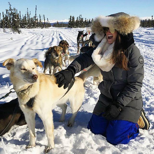 #Repost @phelangoood ・・・ These dawgs pulling my sled and my heartstrings . . . . . #visitalaska #travelalaska #sharingalaska #thealaskalife #explorealaska #naturealaska #ilovealaska #iloveanchorage #alyeska #thelastfrontier #alaska#wasilla #iditarod #mushingschool #mushing #dogsledding #sleddog #visitanchorage #thisisalaska #anchorage