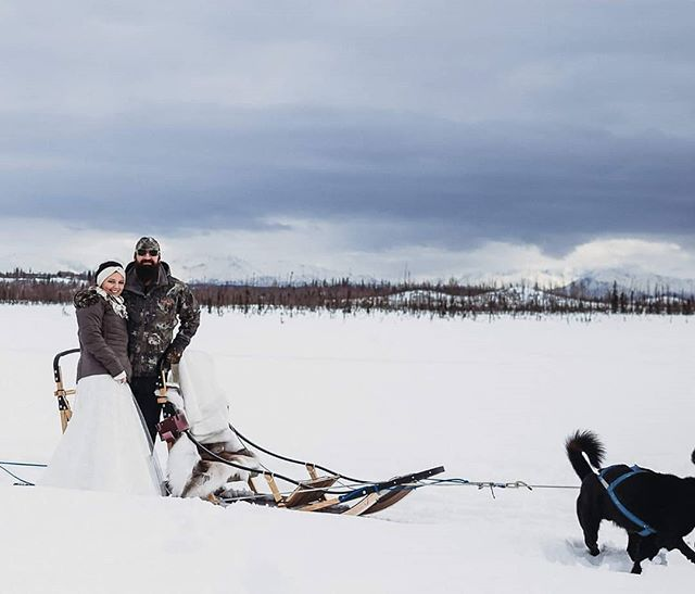 #Repost @wildlovealaska ・・・ Follow up photos from this amazing elopement a few weeks ago. It was such a fun day with a one of a kind couple who had a true appreciation for all things Alaskan, even the temperamental March weather.  Thanks to the skills of Lillie Bullock Photography for being able to mush on a dog sled and catch some photos at the same time. And thanks to the amazing staff (and dogs) @alaskamushingschool . . . . . #visitalaska #travelalaska #sharingalaska #thealaskalife #explorealaska #naturealaska #ilovealaska #iloveanchorage #alyeska #thelastfrontier #alaska #wasilla #iditarod #mushingschool #mushing #dogsledding #sleddog #visitanchorage #thisisalaska #anchorage