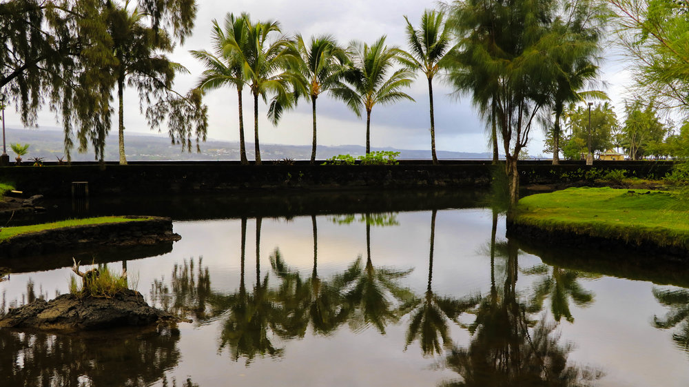Hilo Reflections - Edit.jpg