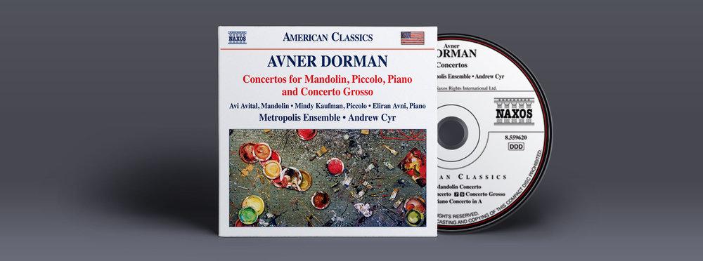 Disk-and-Cover-Presentation-Mock-up_Dorman3.jpg