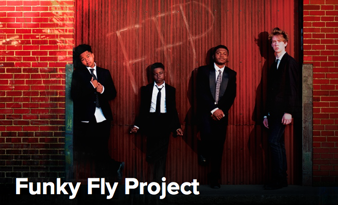 funky fly project.png