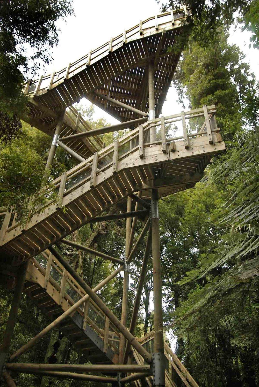 all photos courtesy of hamilton & waikato tourism