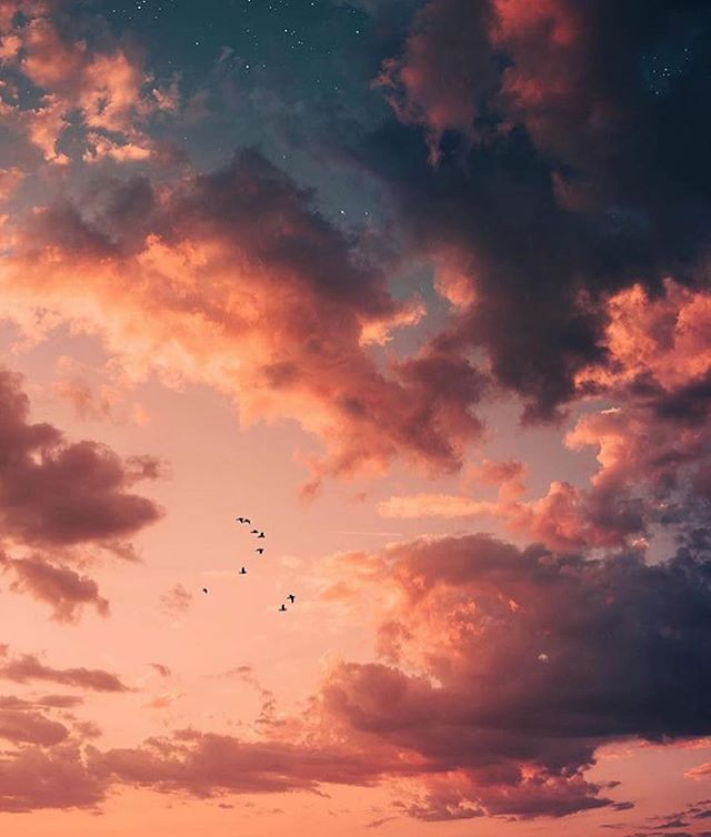 Morning 🌞 #Repost @weheartit ・・・ May the bridges I burn light the way ✨ Photo by @bryanadamc #WHIHeart #sunset #sunrise #mornings #tuesday #morning #photo #sky #clouds #birds