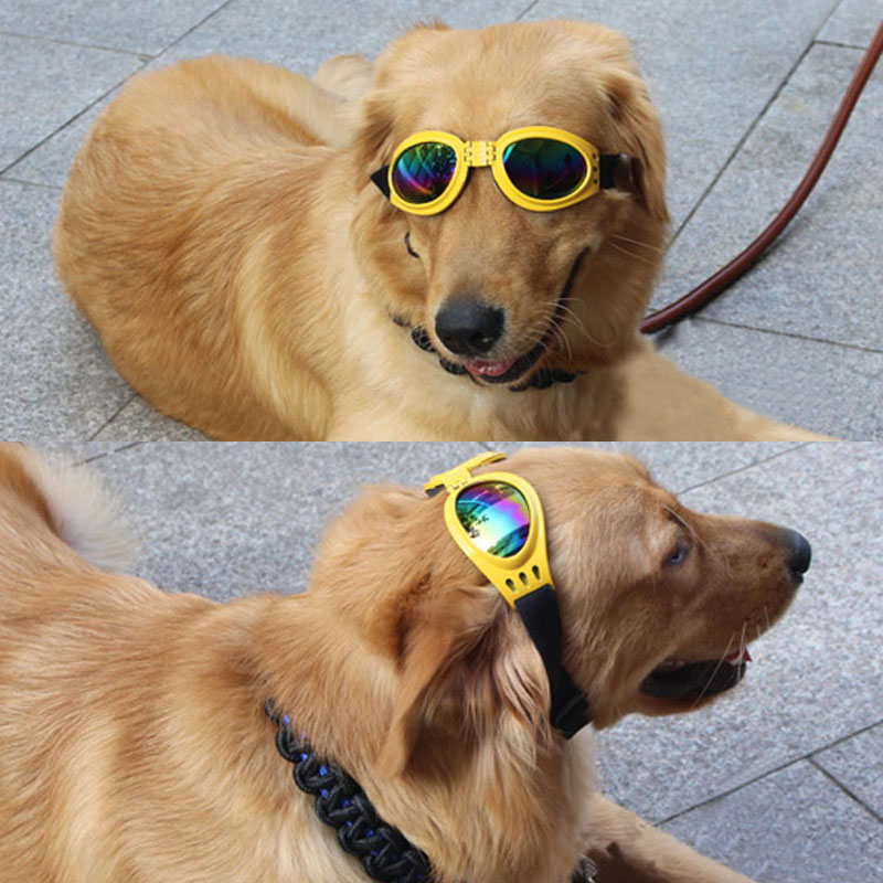 Foldable-Pet-Glasses-Dog-Sunglasses-for-Small-Medium-Large-Dogs-UV-Eye-Protection-Glasses-Doggles-Grooming.jpg