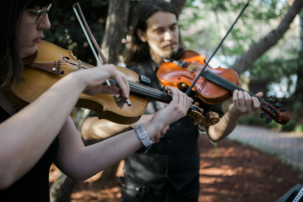 <p><strong>Musicians</strong>Talented string instrument musicians, harpists, and pianists!<a href=/string-musicians>Learn More →</a></p>