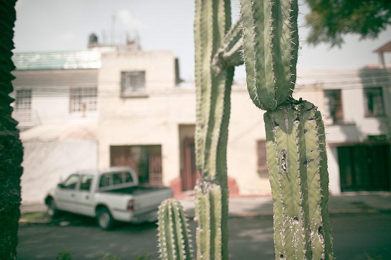 52-fines-de-semana-phoebe-mexico-3.jpg