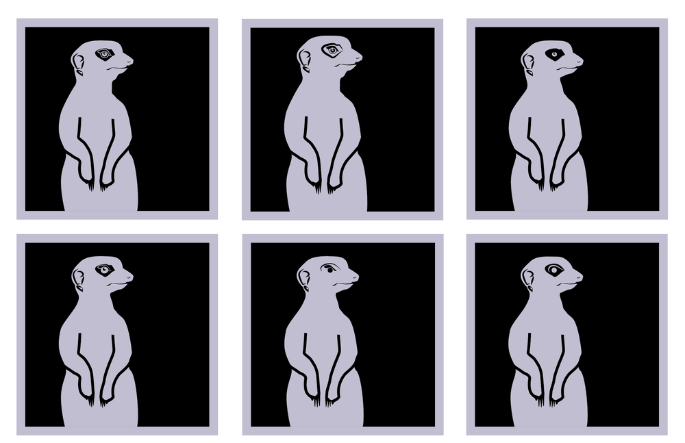 SDZOO New Icons 2-06.png