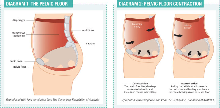 Image from http://www.fitnessnetwork.com.au/resources-library/aqua-pelvic-floor