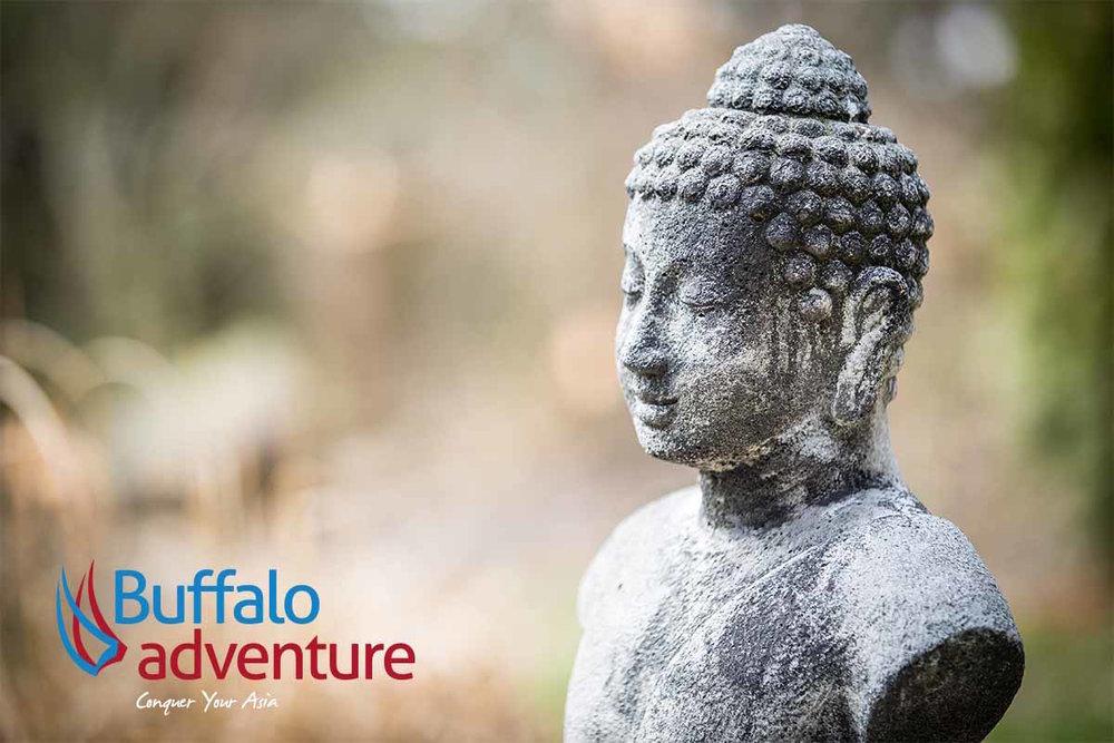 Buffalo+Adventure+R.jpg