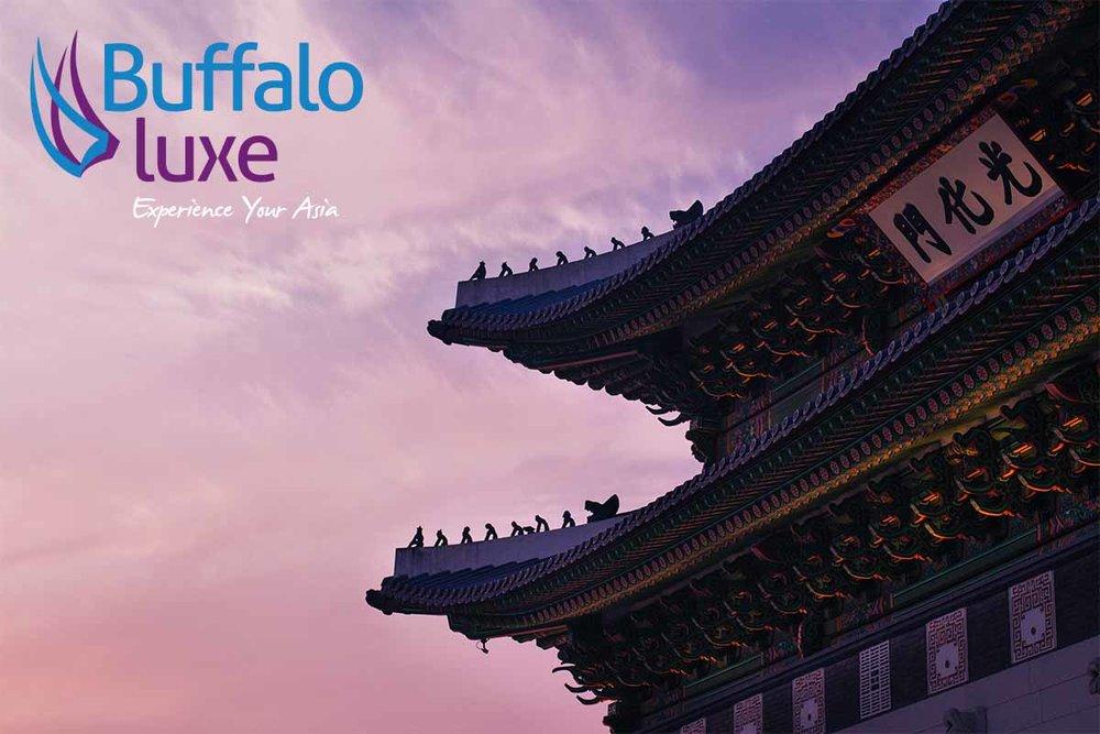 Buffalo+Luxe+Image+R.jpg