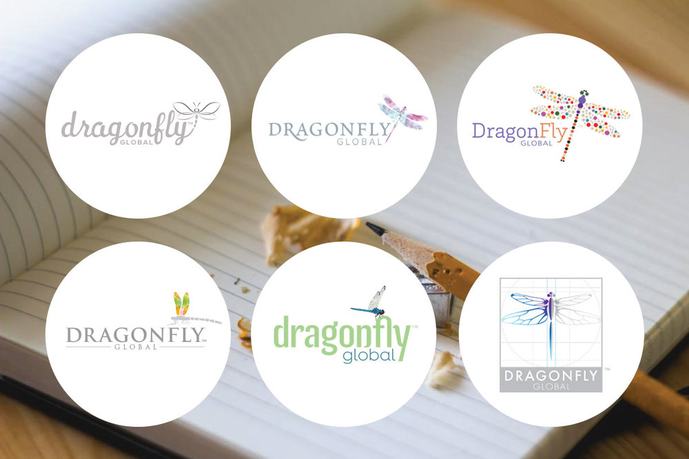 Dragonfly_Process.jpg
