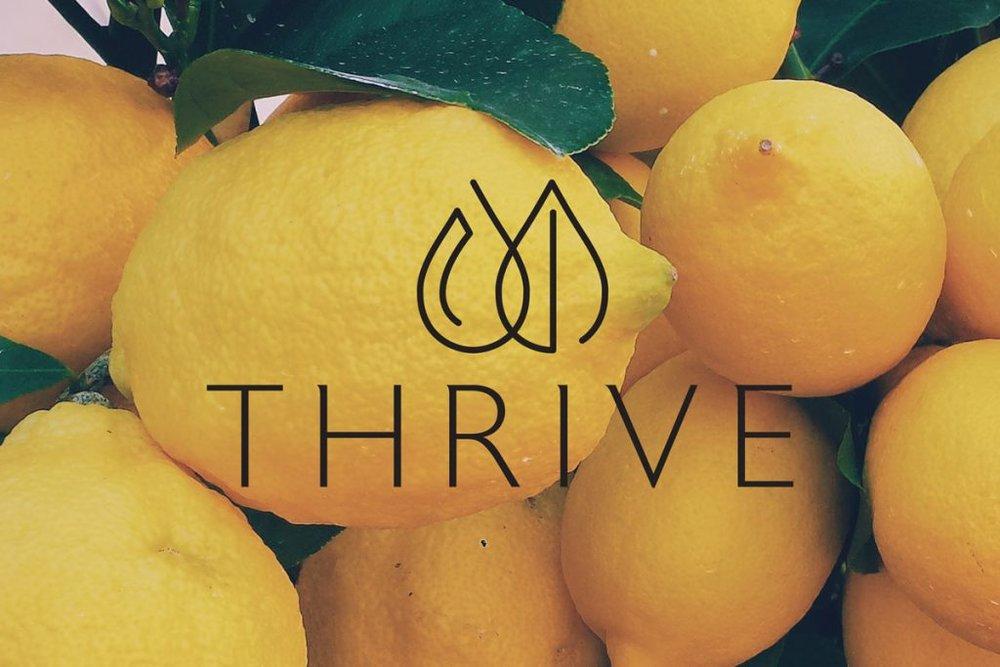 Thrive_Portfolio_Logo-1-1024x683.jpg