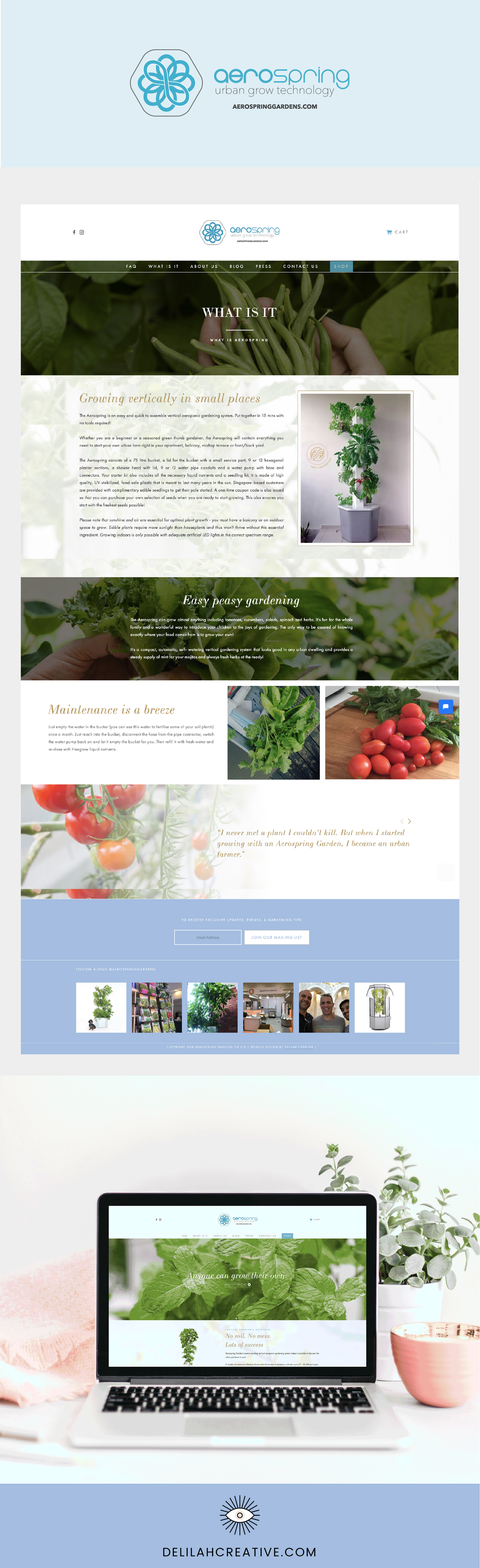 Aerospring-garden-ecommerce-website-design-singapore-delilah-creative