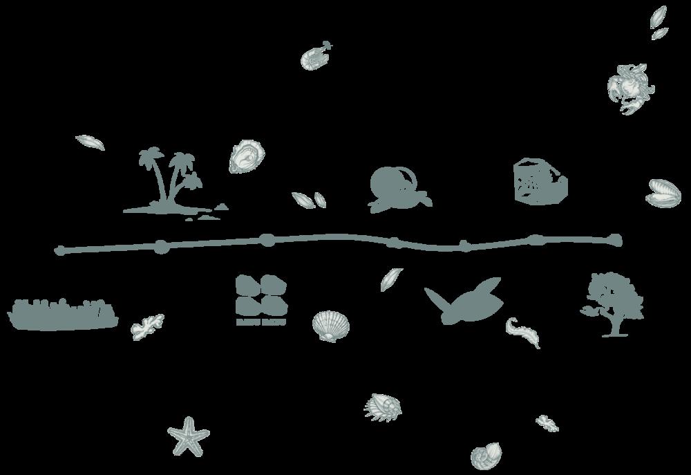 Tengah Island Conservation Timeline.png