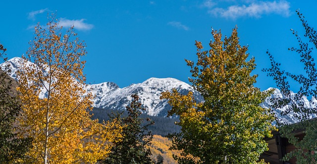 rocky-mountains-1710805_640.jpg