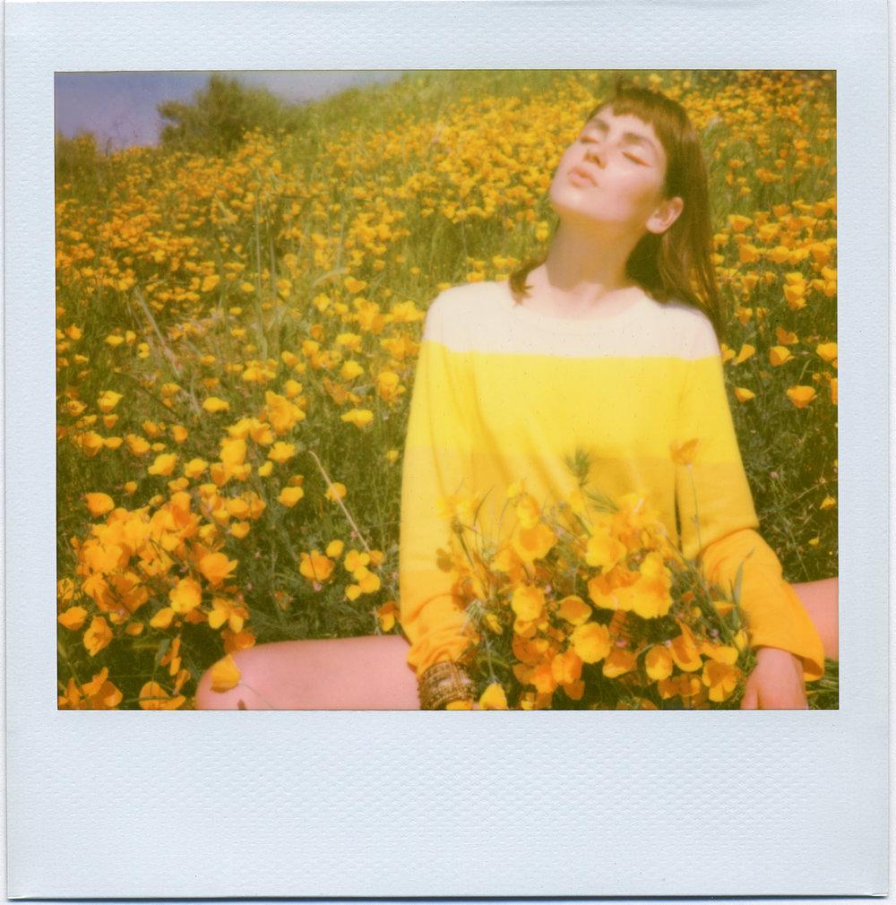 3206_Polaroid_Spectra_H1.jpg
