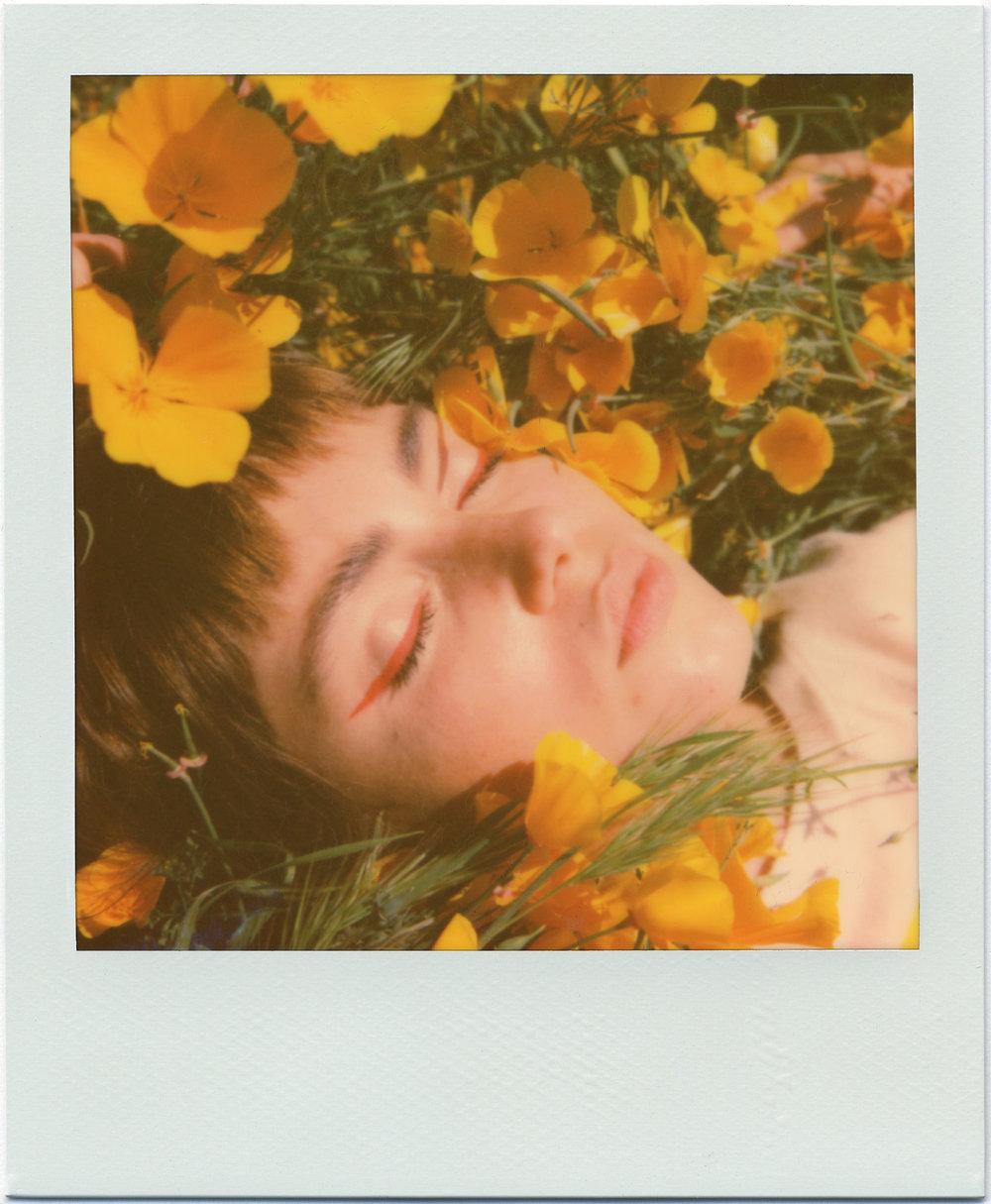 3209_Polaroid_Sx70A.jpg