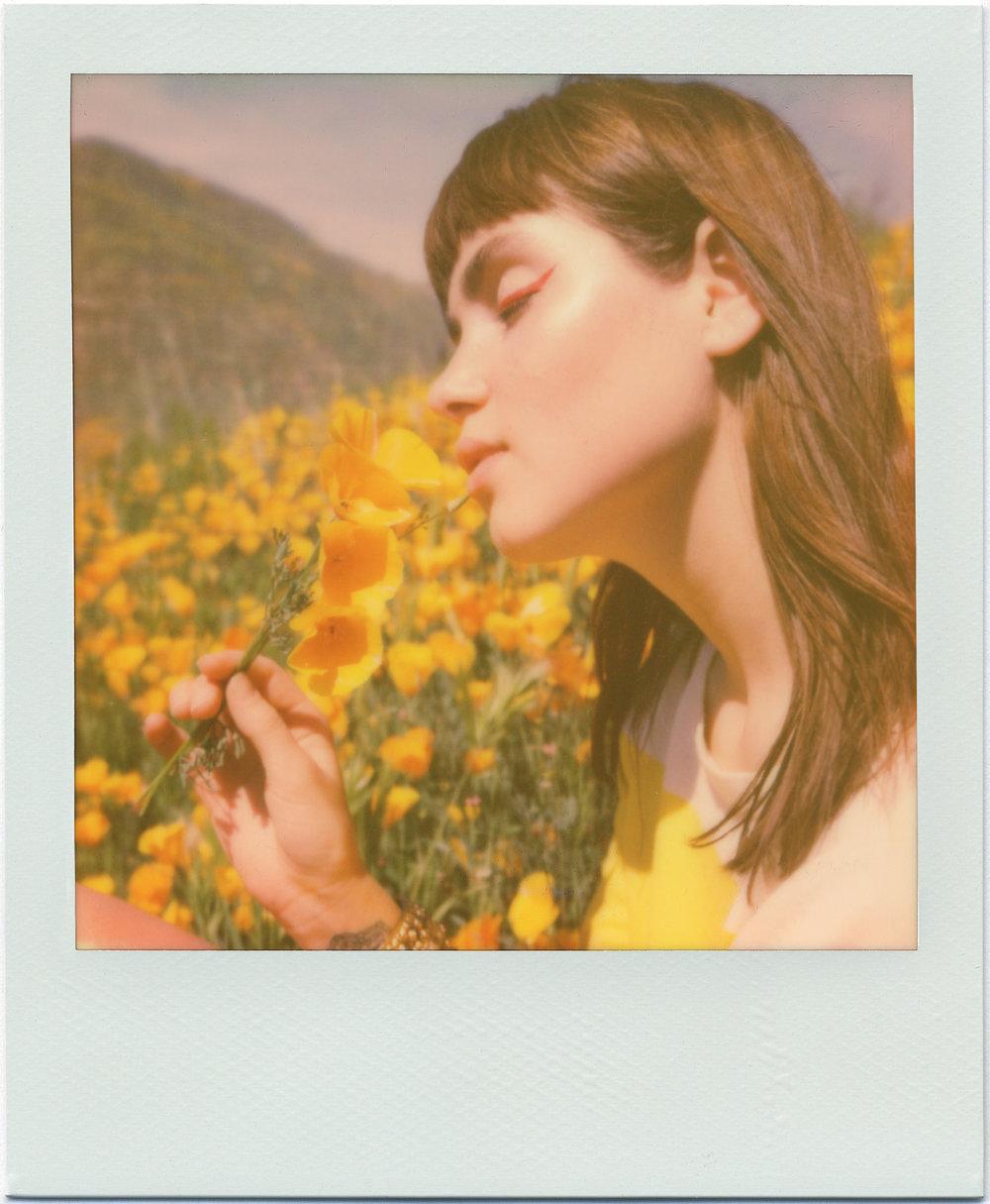 3211_Polaroid_Sx70A.jpg