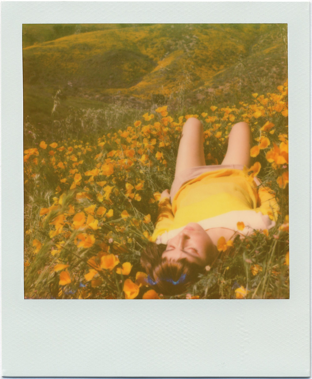 3210_Polaroid_Sx70A.jpg