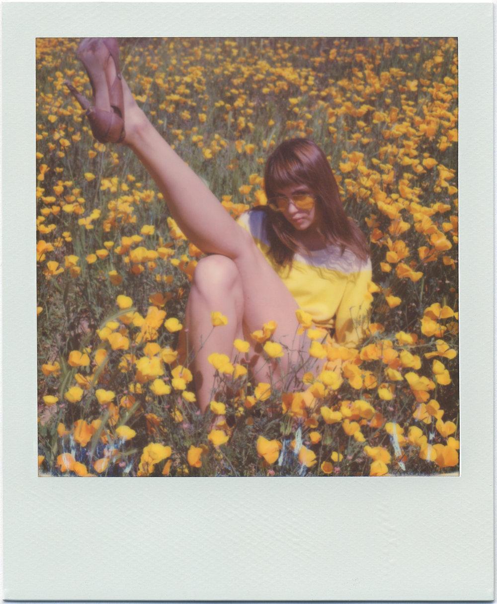 3212_Polaroid_Sx70A.jpg