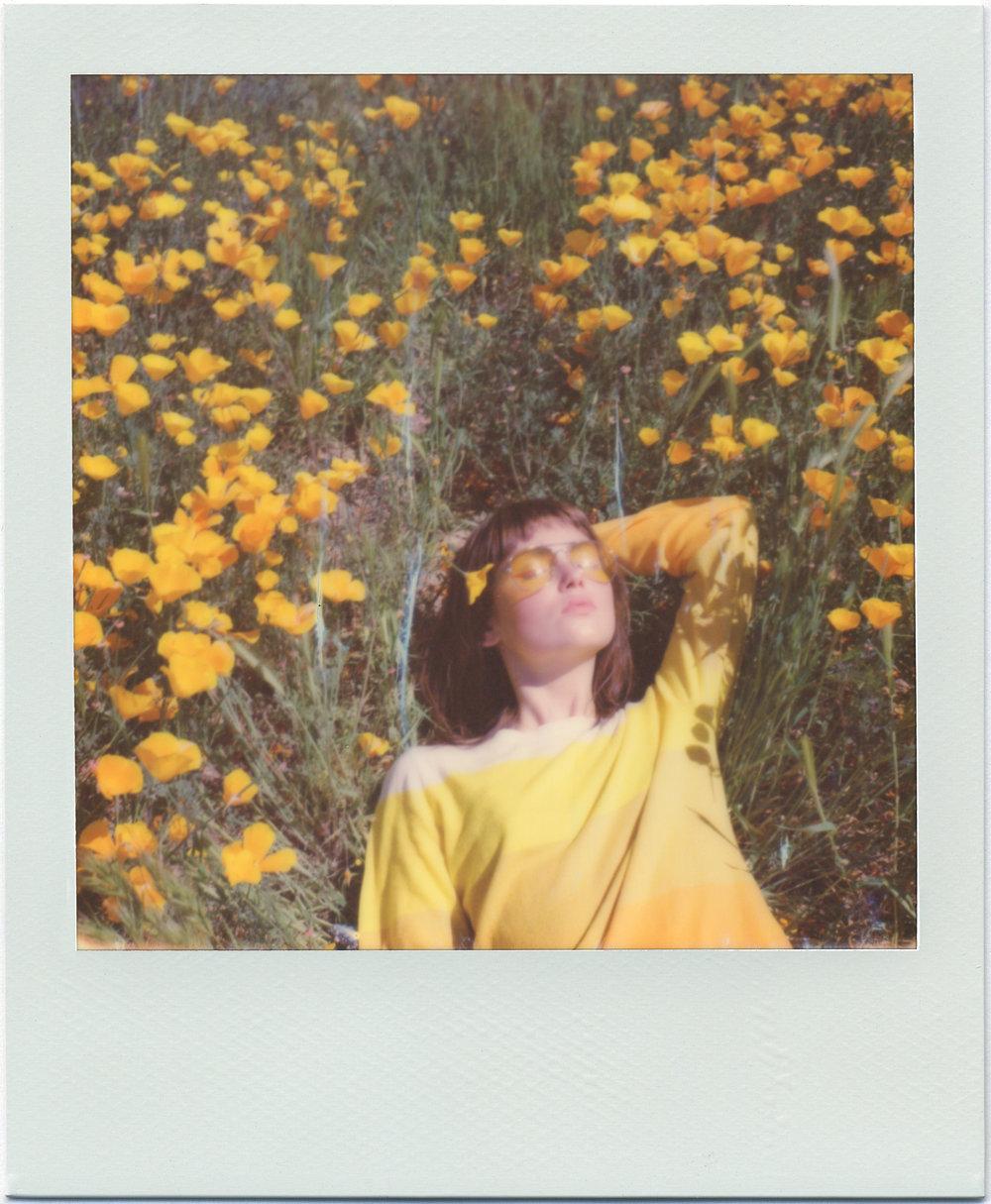 3213_Polaroid_Sx70A.jpg