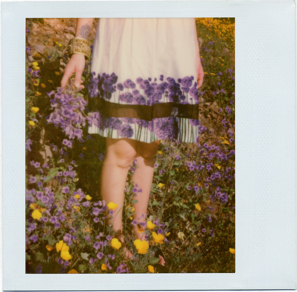 3214_Polaroid_Spectra_V1.jpg