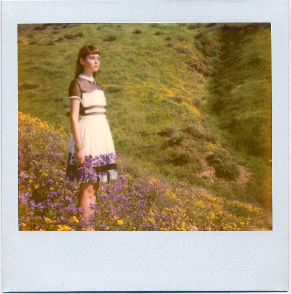 3216_Polaroid_Spectra_H1.jpg