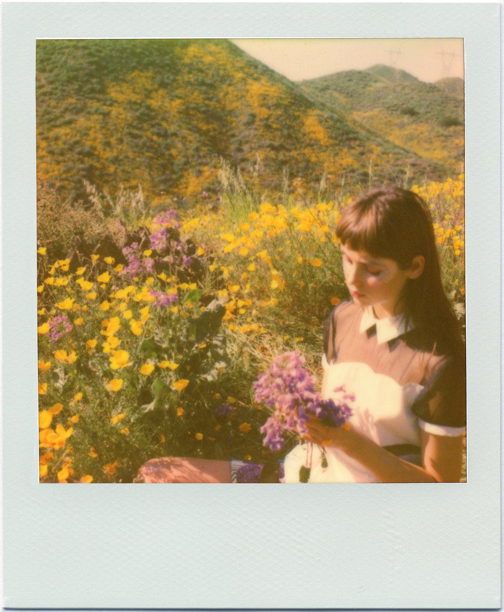 3220_Polaroid_Sx70A.jpg