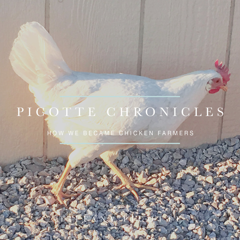 Picotte Chronicles Chicken Farmers.jpg